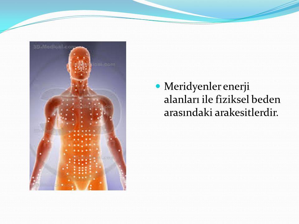 Meridyenler enerji alanları ile fiziksel beden arasındaki arakesitlerdir.