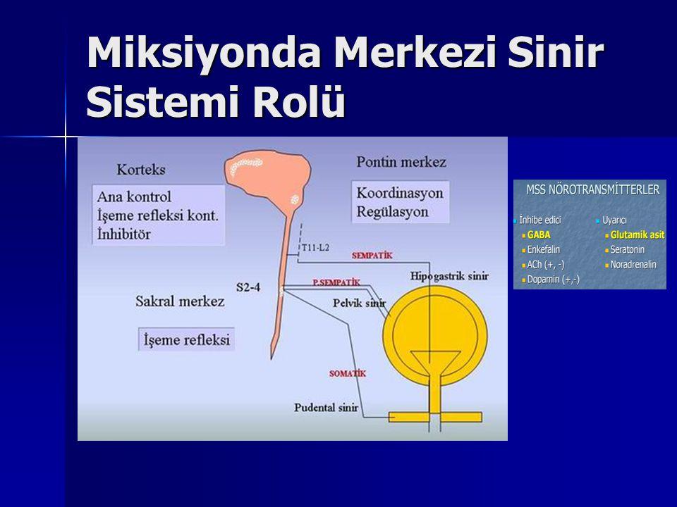 Miksiyonda Merkezi Sinir Sistemi Rolü