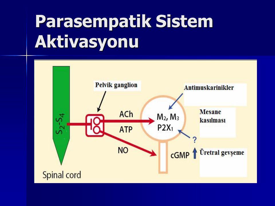Parasempatik Sistem Aktivasyonu