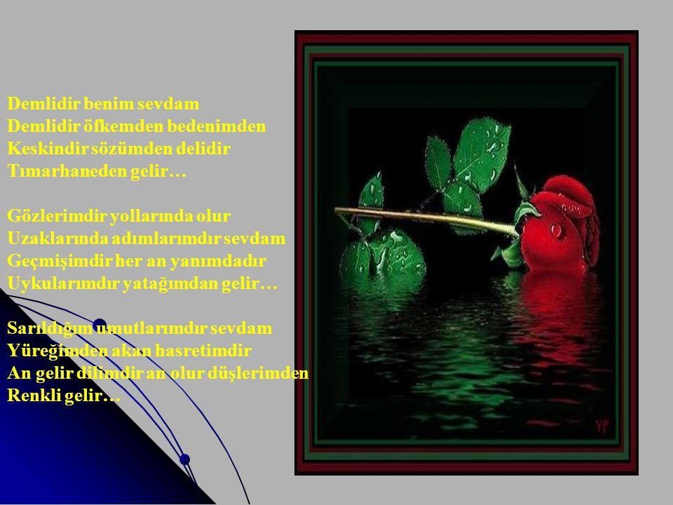 MARVAN OĞUZ Bu slayt gösterimini SESLİ ve kendi akışında izleyiniz Bu şiir Marvan OĞUZ 'un '' Baharın Bittiği Yer '' adlı kitabından alınmış