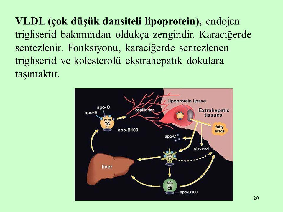 20 VLDL (çok düşük dansiteli lipoprotein), endojen trigliserid bakımından oldukça zengindir. Karaciğerde sentezlenir. Fonksiyonu, karaciğerde sentezle