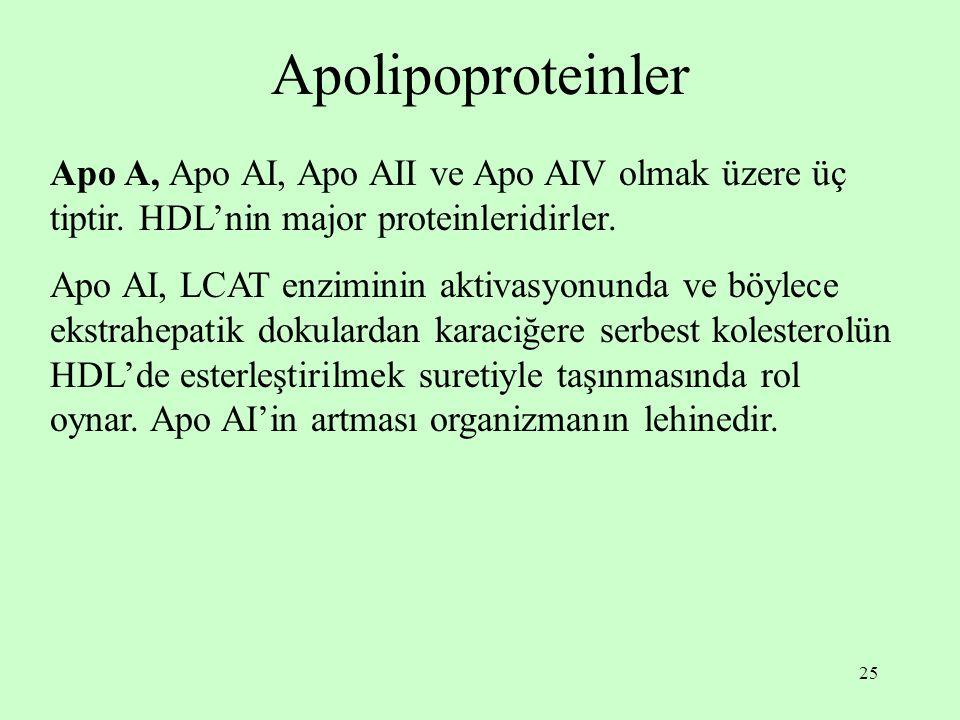 25 Apolipoproteinler Apo A, Apo AI, Apo AII ve Apo AIV olmak üzere üç tiptir. HDL'nin major proteinleridirler. Apo AI, LCAT enziminin aktivasyonunda v