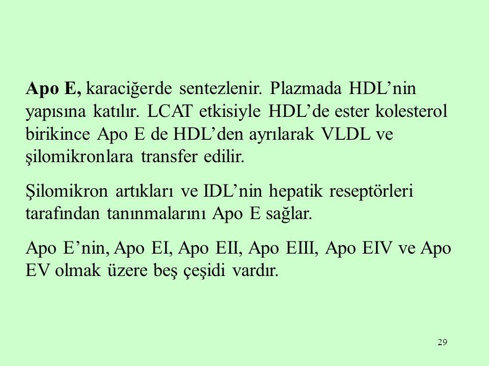 29 Apo E, karaciğerde sentezlenir. Plazmada HDL'nin yapısına katılır. LCAT etkisiyle HDL'de ester kolesterol birikince Apo E de HDL'den ayrılarak VLDL