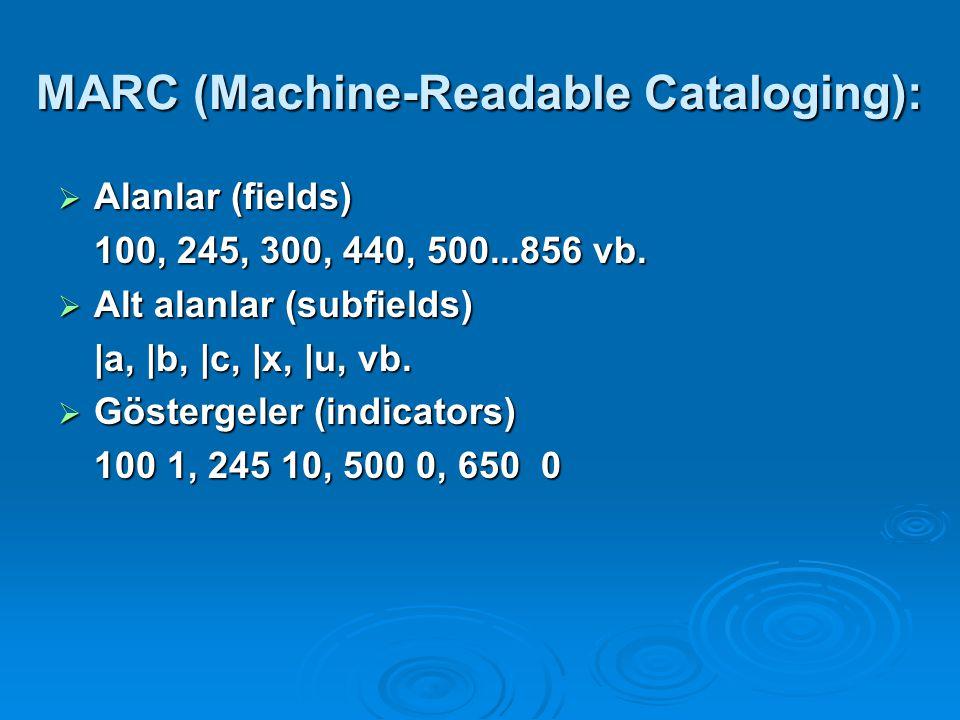 MARC TAG ALANLARI 0XX Kontrol alanları 006 Kayıt türü ( m bilgisayar dosyası) 007 Fiziksel tanımlama sabit alanı (Bilgisayar dosyaları için) 022 Uluslararası Standart Dergi Numarası 245 Başlık 246 Farklı başlık girişleri 256 Bilgisayar dosya karakteristiği 5XX Notlar 506 Ulaşım üzerine sınırlamalar 516 Bilgisayar dosya türü veya veri hakkında not.