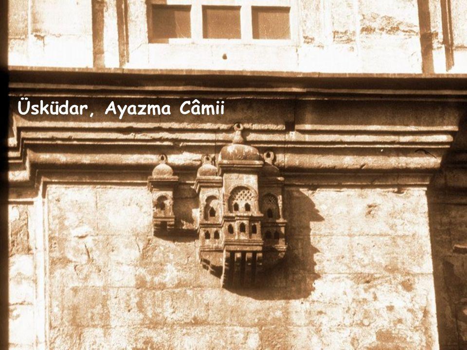 Kuş evleri, kuş köşkleri Türk'ün acıma duygusu, sırf kendi cinsine, kendi nesline veya ırkına yönelik değildir.