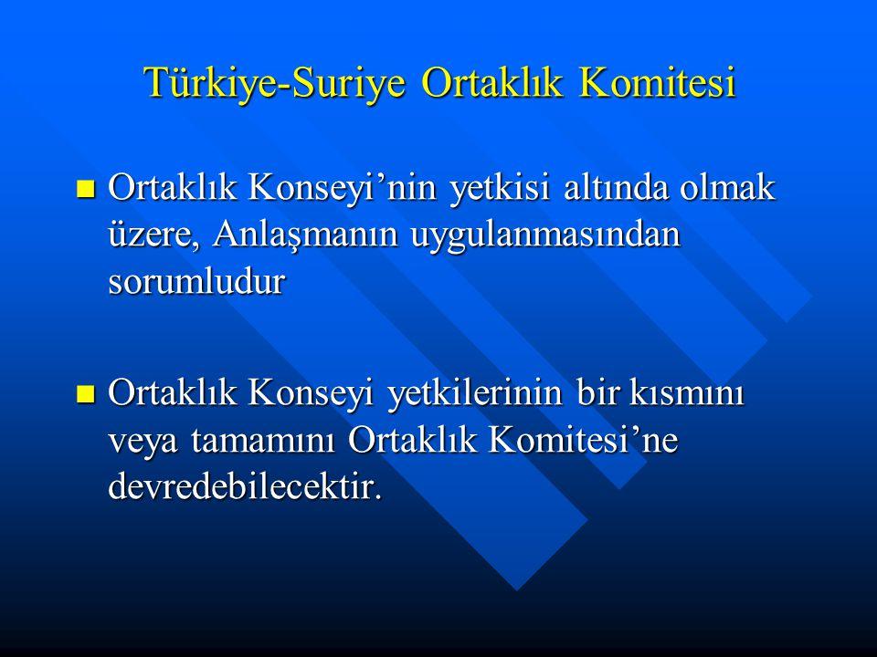 Türkiye-Suriye Ortaklık Komitesi Ortaklık Konseyi'nin yetkisi altında olmak üzere, Anlaşmanın uygulanmasından sorumludur Ortaklık Konseyi'nin yetkisi