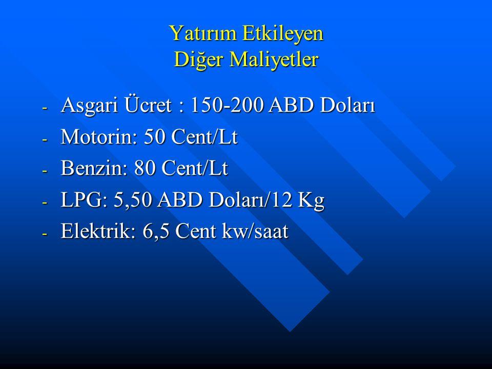 Yatırım Etkileyen Diğer Maliyetler - Asgari Ücret : 150-200 ABD Doları - Motorin: 50 Cent/Lt - Benzin: 80 Cent/Lt - LPG: 5,50 ABD Doları/12 Kg - Elekt