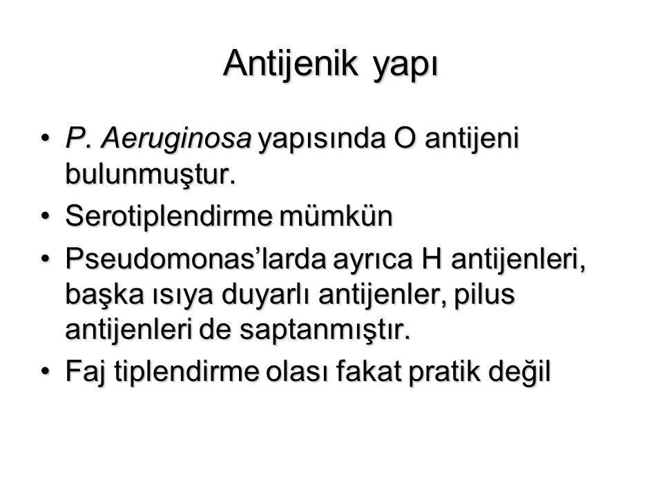 Antijenik yapı P. Aeruginosa yapısında O antijeni bulunmuştur.P. Aeruginosa yapısında O antijeni bulunmuştur. Serotiplendirme mümkünSerotiplendirme mü