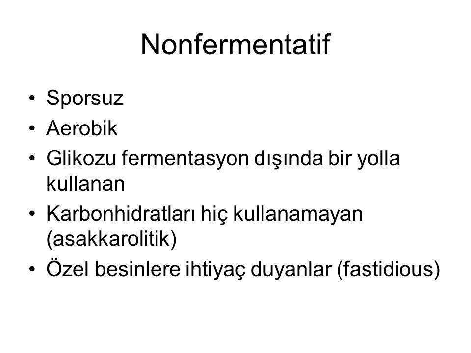 Nonfermentatif Sporsuz Aerobik Glikozu fermentasyon dışında bir yolla kullanan Karbonhidratları hiç kullanamayan (asakkarolitik) Özel besinlere ihtiya