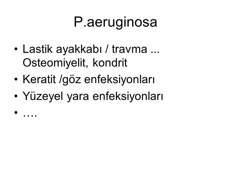 P.aeruginosa Lastik ayakkabı / travma... Osteomiyelit, kondrit Keratit /göz enfeksiyonları Yüzeyel yara enfeksiyonları ….