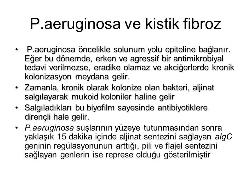 P.aeruginosa ve kistik fibroz P.aeruginosa öncelikle solunum yolu epiteline bağlanır. Eğer bu dönemde, erken ve agressif bir antimikrobiyal tedavi ver