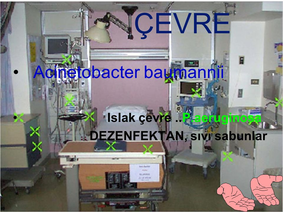 Sorun mikroorganizma kinetiği Jarvis WR. Hospital Infection 2007