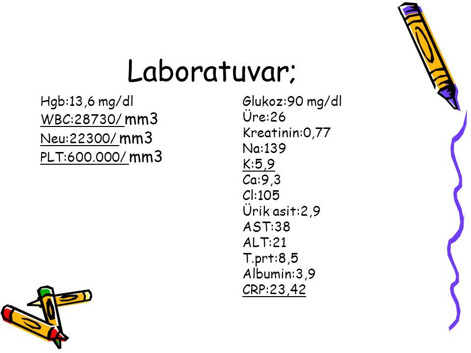 Laboratuvar; Hgb:13,6 mg/dl WBC:28730/ mm3 Neu:22300/ mm3 PLT:600.000/ mm3 Glukoz:90 mg/dl Üre:26 Kreatinin:0,77 Na:139 K:5,9 Ca:9,3 Cl:105 Ürik asit: