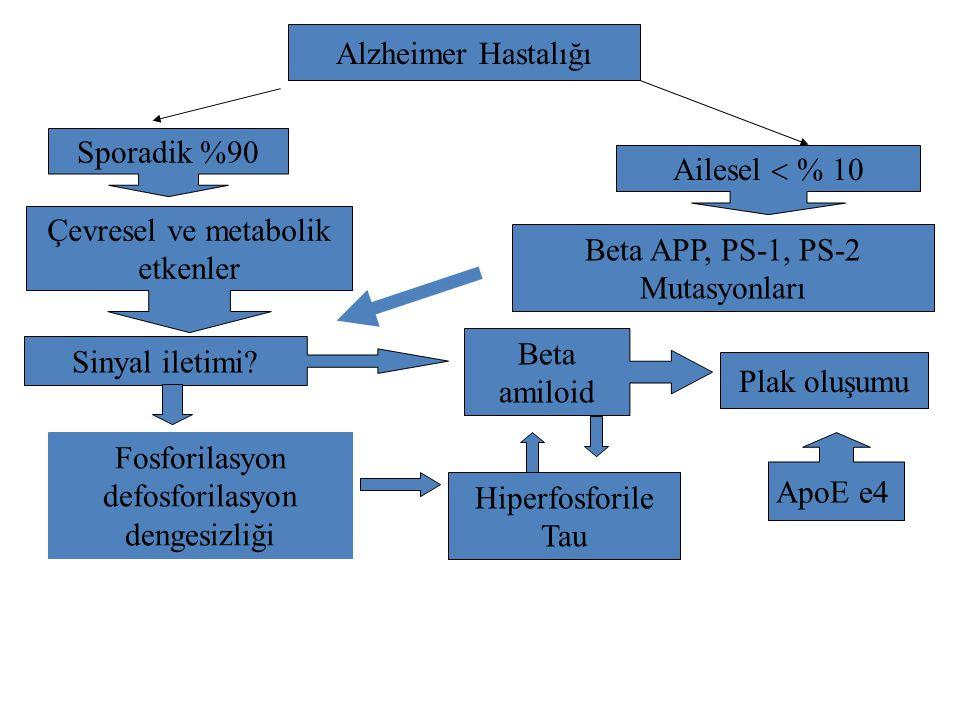 Alzheimer Hastalığı Sporadik %90 Çevresel ve metabolik etkenler Sinyal iletimi? Beta amiloid Plak oluşumu Hiperfosforile Tau Ailesel  Beta APP,