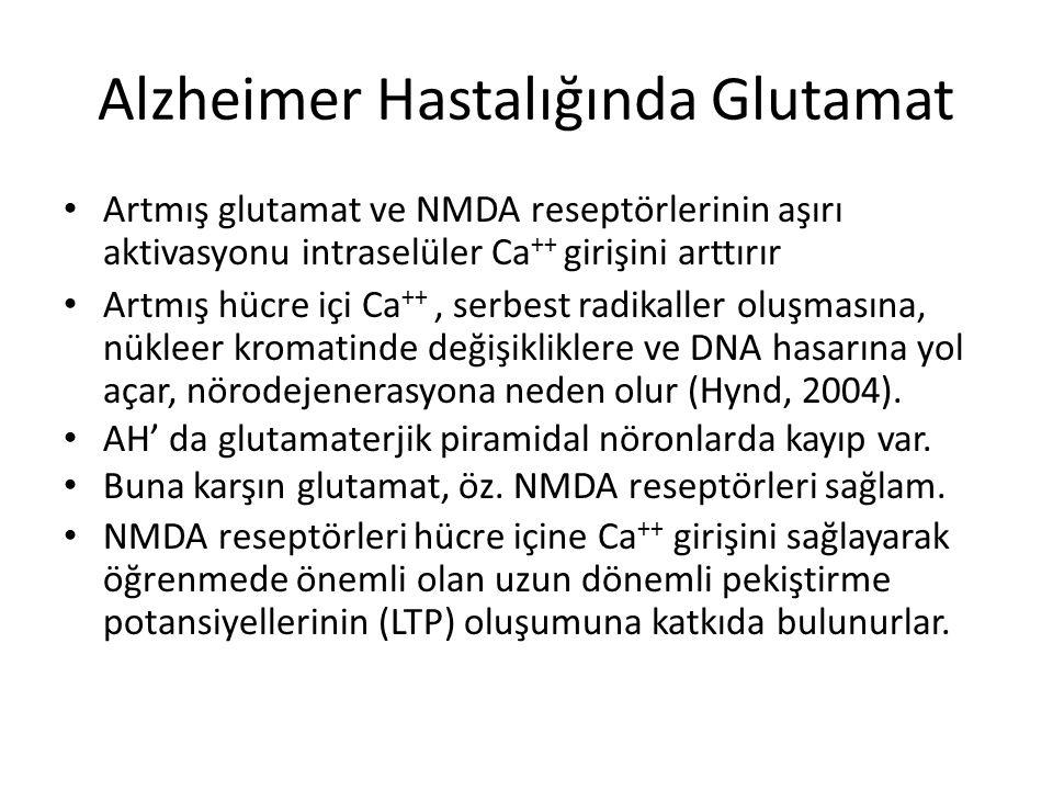 Alzheimer Hastalığında Glutamat Artmış glutamat ve NMDA reseptörlerinin aşırı aktivasyonu intraselüler Ca ++ girişini arttırır Artmış hücre içi Ca ++,