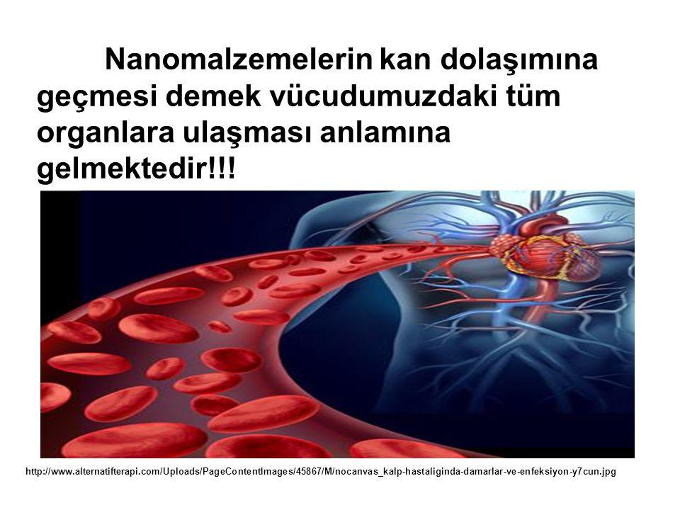 Nanomalzemelerin kan dolaşımına geçmesi demek vücudumuzdaki tüm organlara ulaşması anlamına gelmektedir!!.