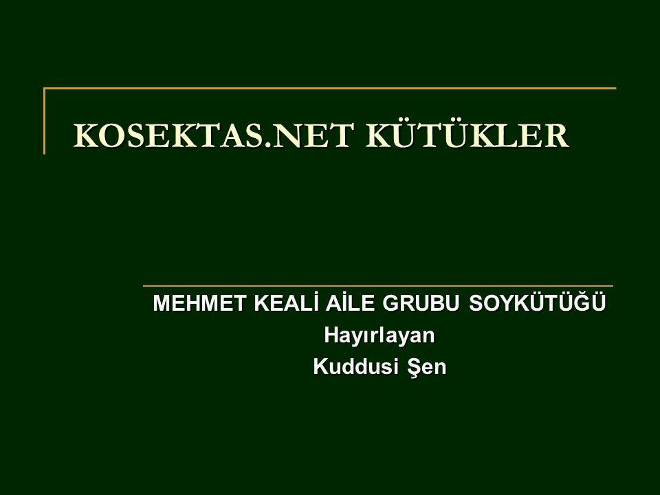 Salim Hakkı SalimTugay Yusuf OktayMeltem Turgay OrkunLale