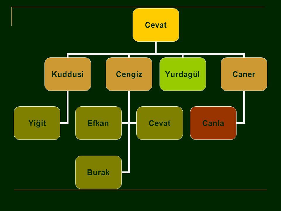Cevat Kuddusi Yiğit Cengiz EfkanCevat Burak YurdagülCaner Canla
