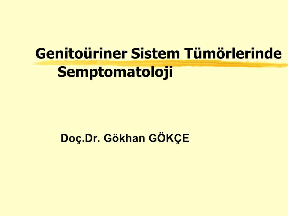 Genito-üriner Sistem Tümörleri lÜroepitelyal Tümörler –Mesane –Renal Pelvis –Üreter lProstat Ca lBöbrek Tümörleri lTestis Tümörleri