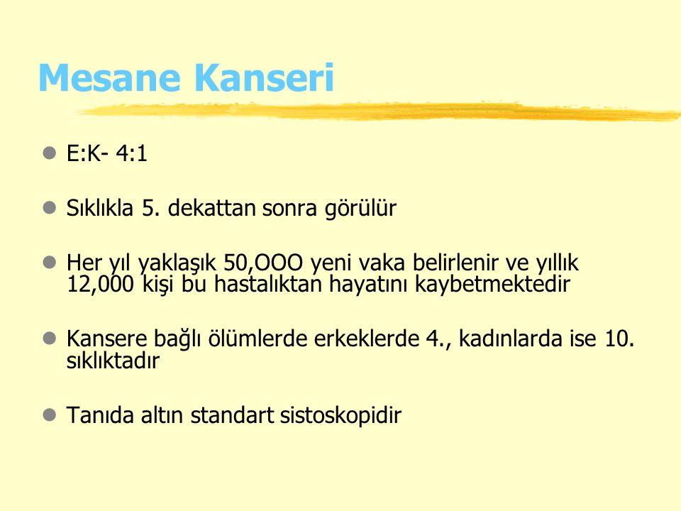 Mesane Kanseri lE:K- 4:1 lSıklıkla 5.