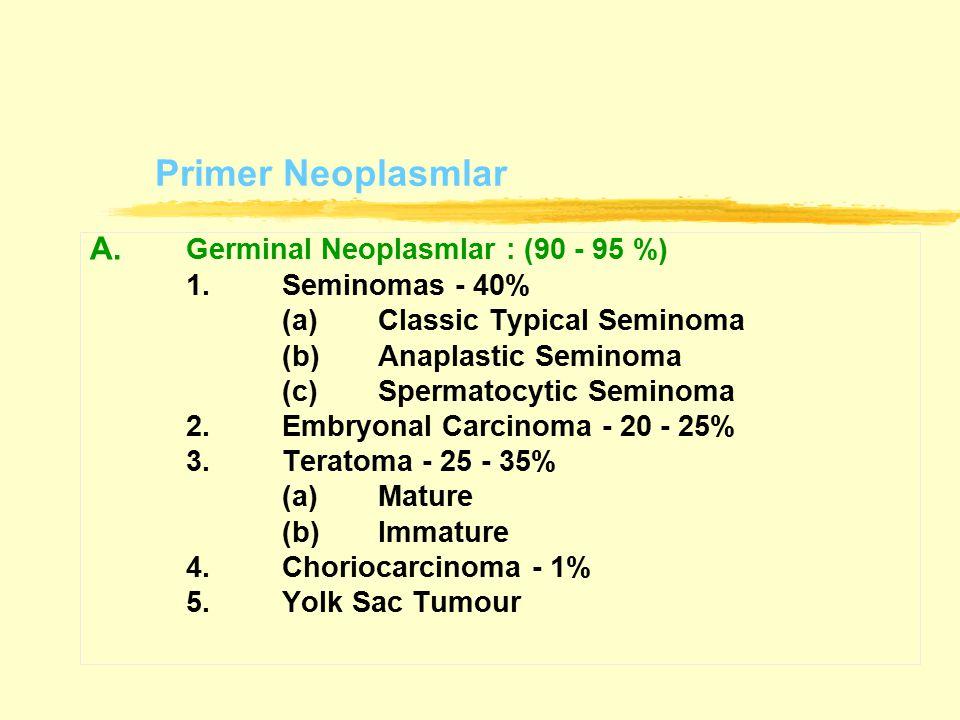Primer Neoplasmlar A. Germinal Neoplasmlar : (90 - 95 %) 1.Seminomas - 40% (a)Classic Typical Seminoma (b)Anaplastic Seminoma (c)Spermatocytic Seminom