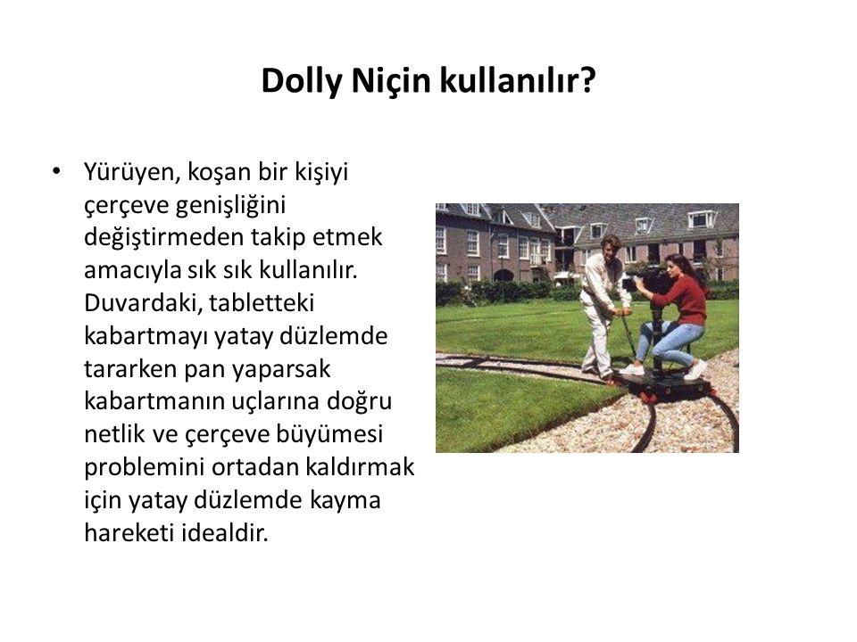 Dolly Niçin kullanılır.