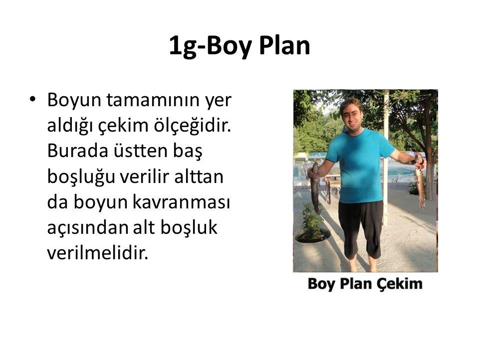 1g-Boy Plan Boyun tamamının yer aldığı çekim ölçeğidir.