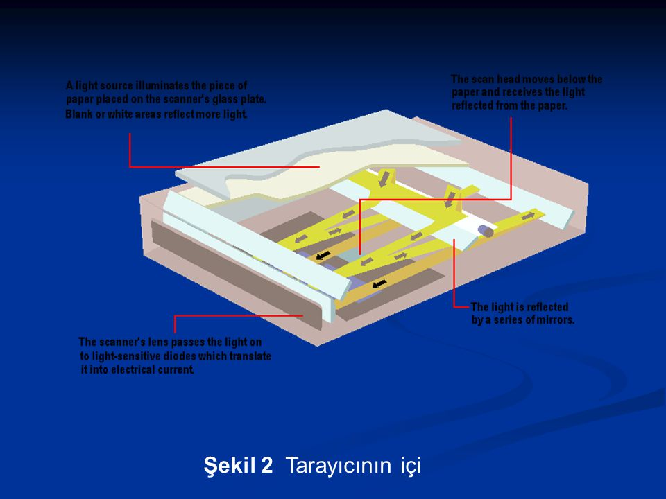Şekil 3 Algılayıcı gözlerin bulunduğu kafa (CCD Array)