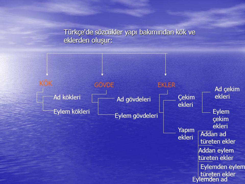 Türkçe'de sözcükler yapı bakımından kök ve eklerden oluşur: KÖK GÖVDEEKLER Ad kökleri Eylem kökleri Ad gövdeleri Eylem gövdeleri Çekim ekleri Yapım ek