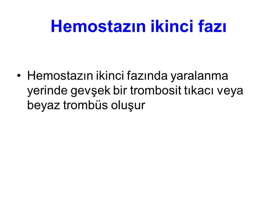 Hemostazın ikinci fazı Hemostazın ikinci fazında yaralanma yerinde gevşek bir trombosit tıkacı veya beyaz trombüs oluşur