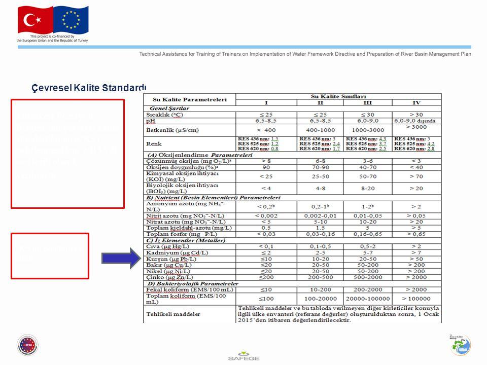 Çevresel Kalite Standardı Müzakere Pozisyon Belgesi'nde çevresel kalite standartlarının (ÇKS) belirlenmesi için 2015 yılı son tarih olarak verilmiştir