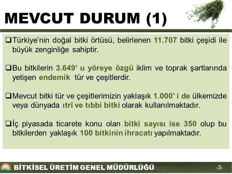 BİTKİSEL ÜRETİM GENEL MÜDÜRLÜĞÜ -3--3-  Türkiye'nin doğal bitki örtüsü, belirlenen 11.707 bitki çeşidi ile büyük zenginliğe sahiptir.  Bu bitkilerin