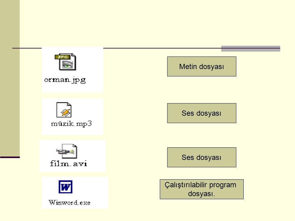 Ses dosyası Çalıştırılabilir program dosyası.