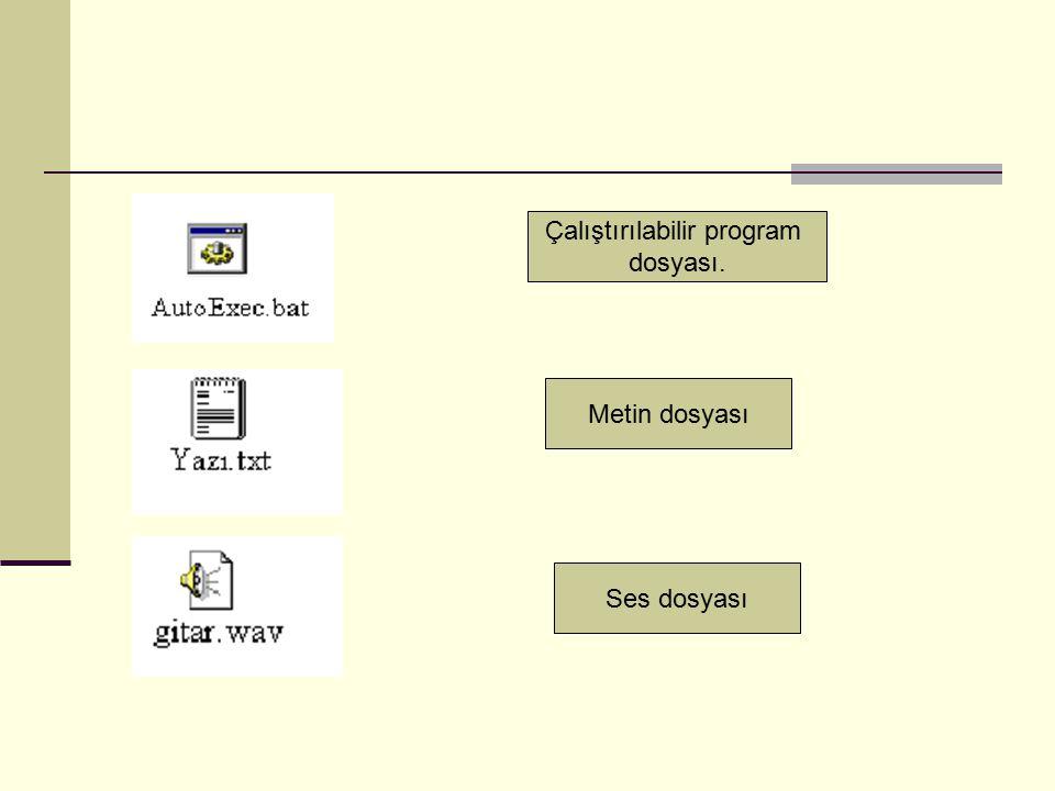 Ses dosyası Metin dosyası Çalıştırılabilir program dosyası.