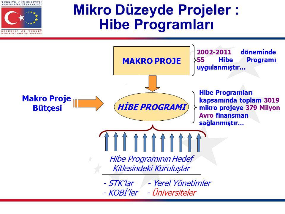 Mikro Düzeyde Projeler : Hibe Programları MAKRO PROJE Makro Proje Bütçesi HİBE PROGRAMI Hibe Programının Hedef Kitlesindeki Kuruluşlar 2002-2011 döneminde 55 Hibe Programı uygulanmıştır...