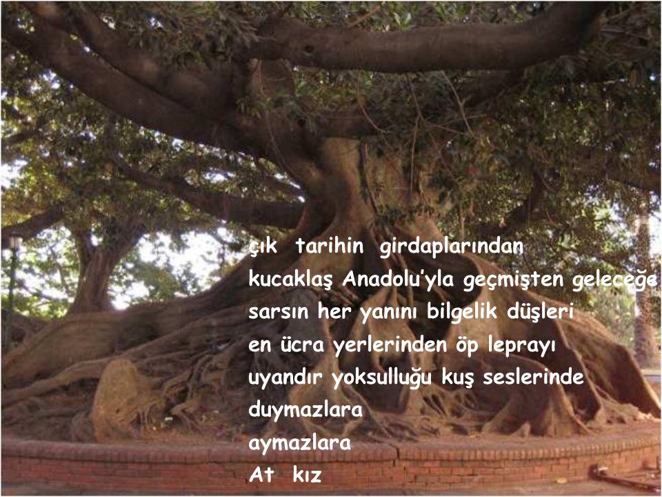 Türkan SAYLAN'a AT KIZ