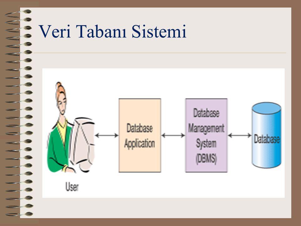 Veri Tabanı Uygulaması (Database Application) İşlevler: –Form yaratmak ve işlemek –Soru yaratmak ve iletmek –Rapor yaratmak ve işlemek –Uygulama mantığınıyürütmek –Uygulamayıdenetlemek