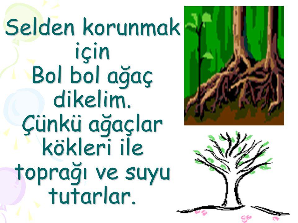 Selden korunmak için Bol bol ağaç dikelim. Çünkü ağaçlar kökleri ile toprağı ve suyu tutarlar.