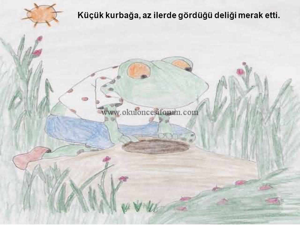 Küçük kurbağa, az ilerde gördüğü deliği merak etti.