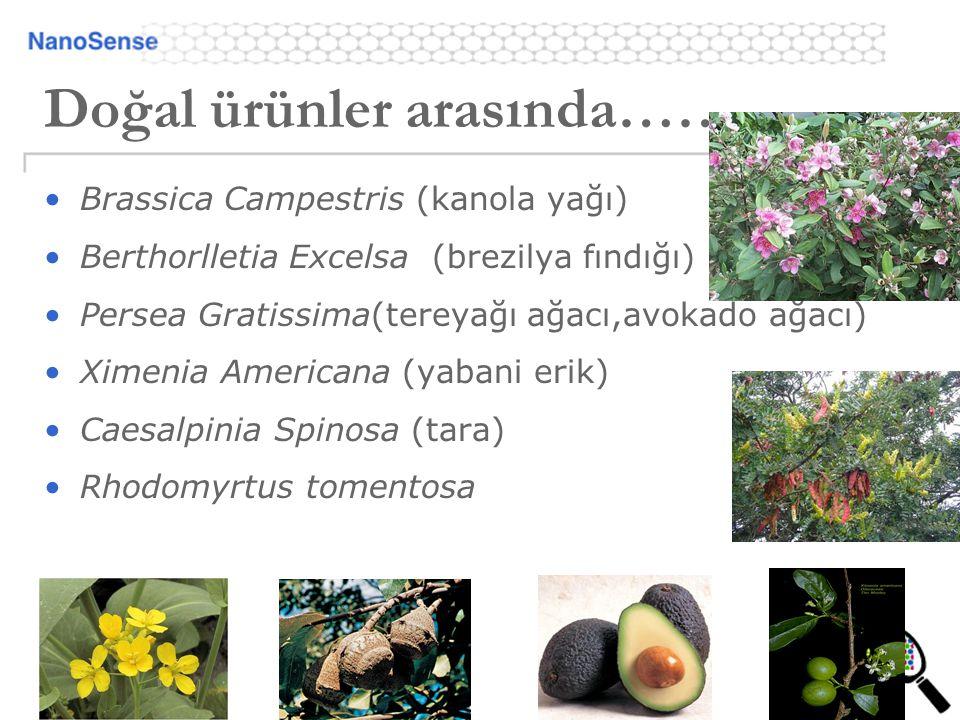 Doğal ürünler arasında……. Brassica Campestris (kanola yağı) Berthorlletia Excelsa (brezilya fındığı) Persea Gratissima(tereyağı ağacı,avokado ağacı) X