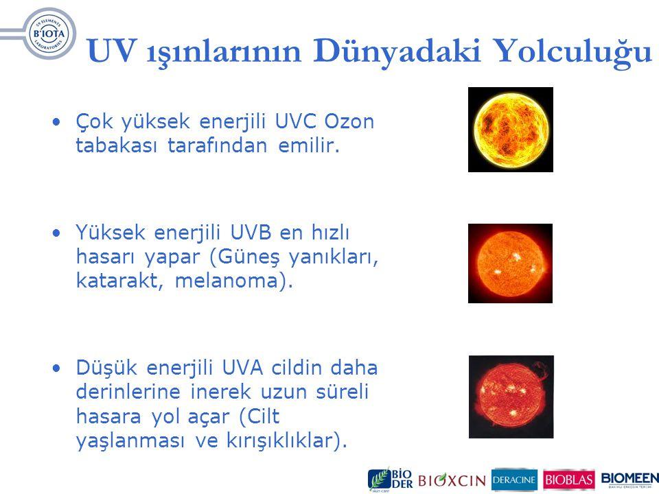 UV ışınlarının Dünyadaki Yolculuğu Çok yüksek enerjili UVC Ozon tabakası tarafından emilir. Yüksek enerjili UVB en hızlı hasarı yapar (Güneş yanıkları
