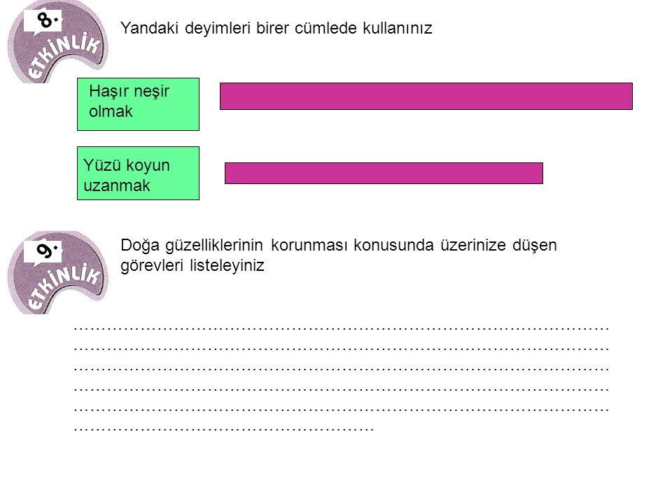 EDANUR GÜMÜŞ 5/C BAHAR KOLEJİ TARSUS/MERSİN