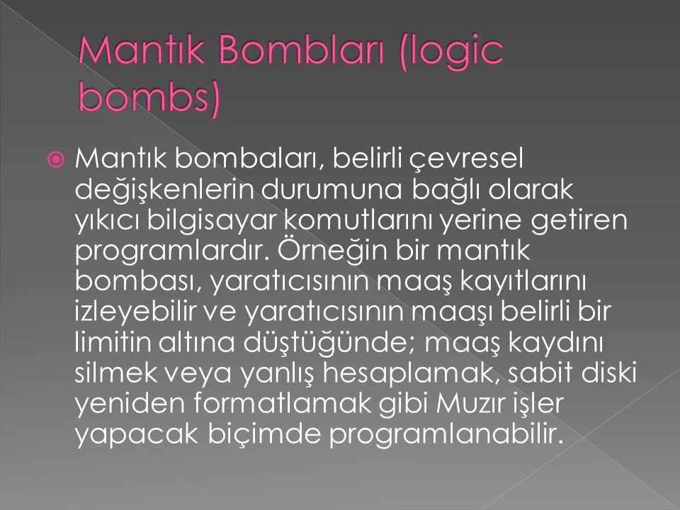  Mantık bombaları, belirli çevresel değişkenlerin durumuna bağlı olarak yıkıcı bilgisayar komutlarını yerine getiren programlardır. Örneğin bir mantı