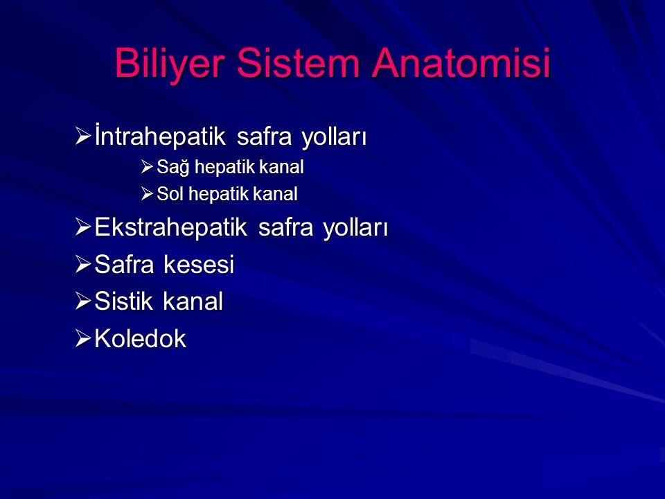Biliyer Sistem Anatomisi  Sağ hepatik kanal, 5., 6., 7., ve 8.