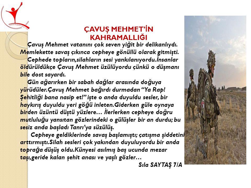 ÇAVUŞ MEHMET' İ N KAHRAMALLI Ğ I Çavuş Mehmet vatanını çok seven yi ğ it bir delikanlıydı.