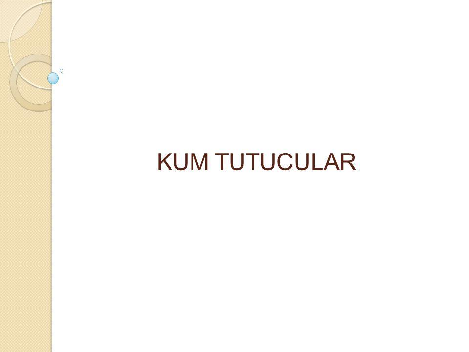 KUM TUTUCULAR