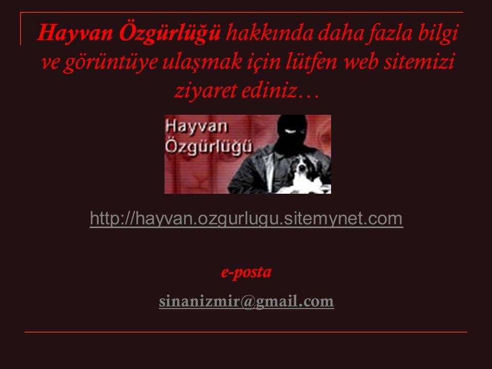 Hayvan Özgürlü ğ ü hakkında daha fazla bilgi ve görüntüye ula ş mak için lütfen web sitemizi ziyaret ediniz… http://hayvan.ozgurlugu.sitemynet.com e-posta sinanizmir@gmail.com
