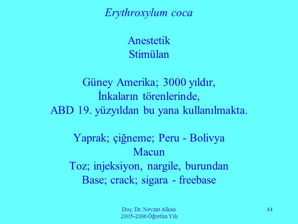 Doç. Dr. Nevzat Alkan 2005-2006 Öğretim Yılı 44 Erythroxylum coca Anestetik Stimülan Güney Amerika; 3000 yıldır, İnkaların törenlerinde, ABD 19. yüzyı