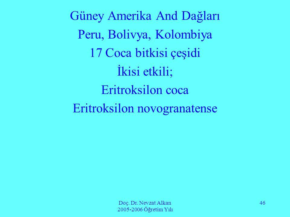 Doç. Dr. Nevzat Alkan 2005-2006 Öğretim Yılı 46 Güney Amerika And Dağları Peru, Bolivya, Kolombiya 17 Coca bitkisi çeşidi İkisi etkili; Eritroksilon c