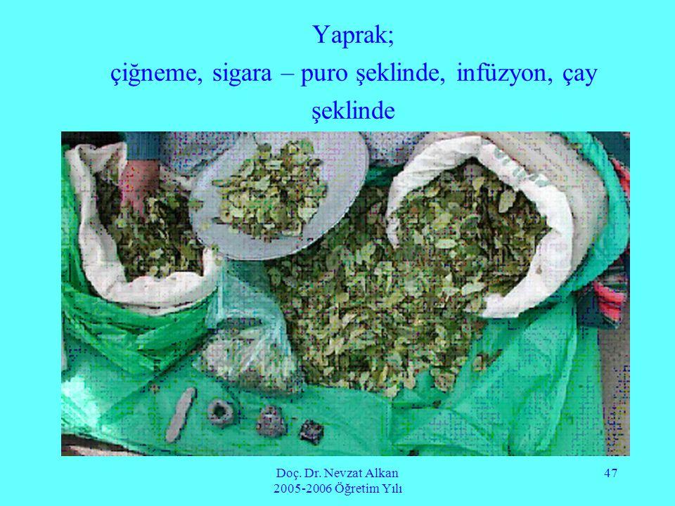 Doç. Dr. Nevzat Alkan 2005-2006 Öğretim Yılı 47 Yaprak; çiğneme, sigara – puro şeklinde, infüzyon, çay şeklinde
